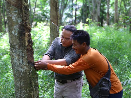 Dari Petani Karet Muba Untuk Sumatera Hingga Ketahanan Indonesia