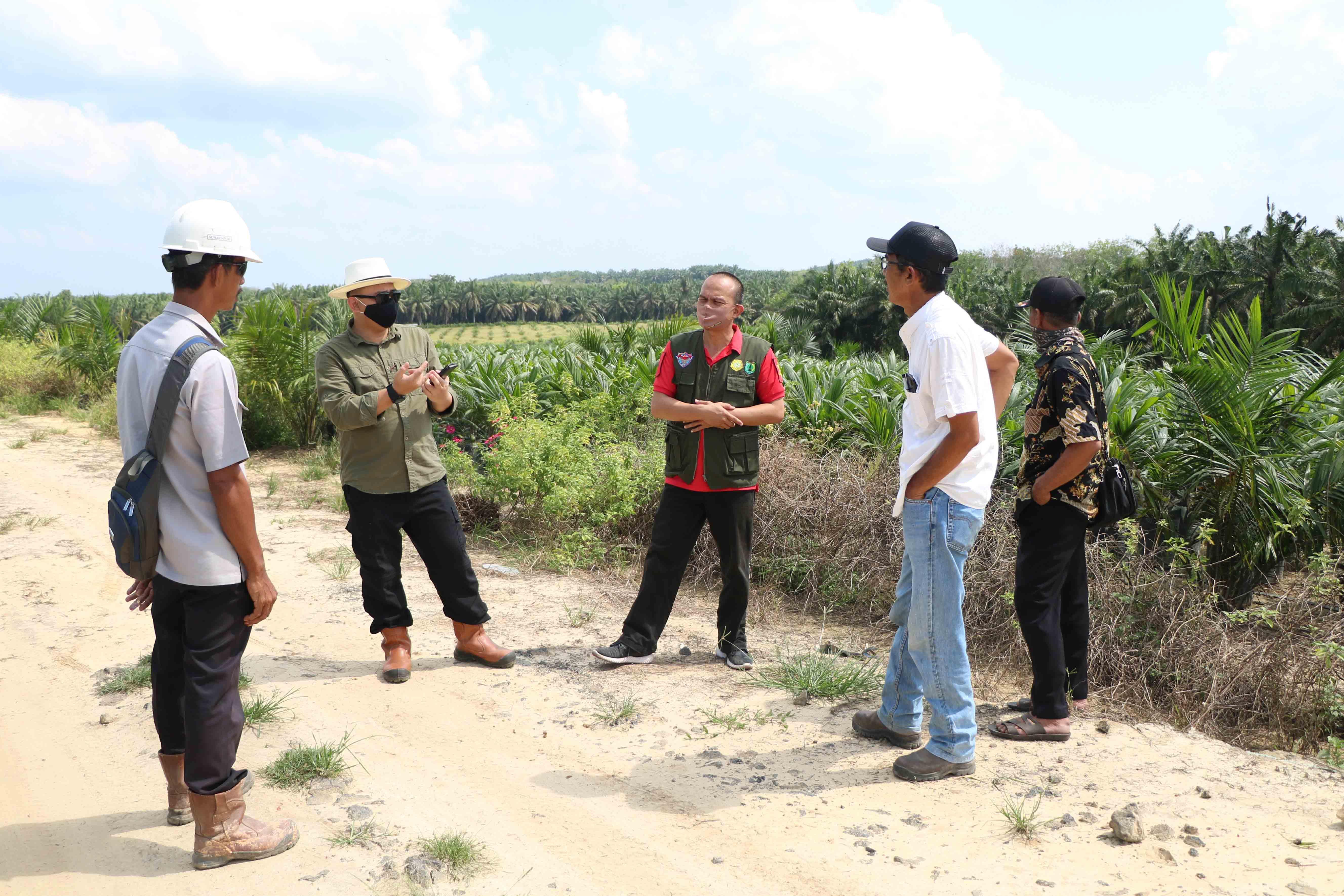Monitoring guna percepatan pelaksanaan pembangunan fisik kebun peremajaan sawit rakyat